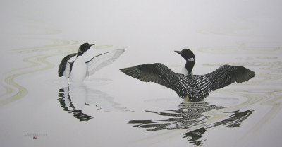 """Courting Loons"""